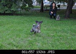 Нажмите на изображение для увеличения Название: DSC_0422.jpg Просмотров: 382 Размер:192.4 Кб ID:69586